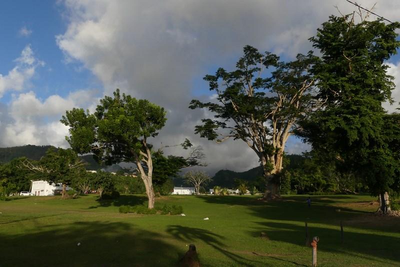 Parcul Roseau