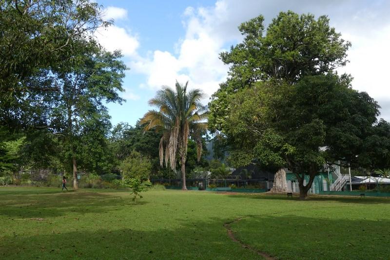 Gradina botanica Port of Spain