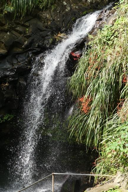 Cascada Annandale Grenada