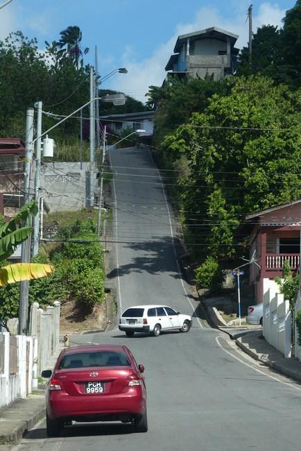 Munti Trinidad