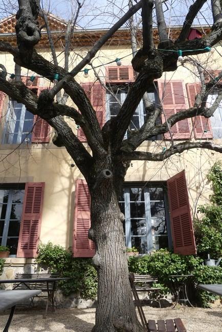 Casa Cezanne