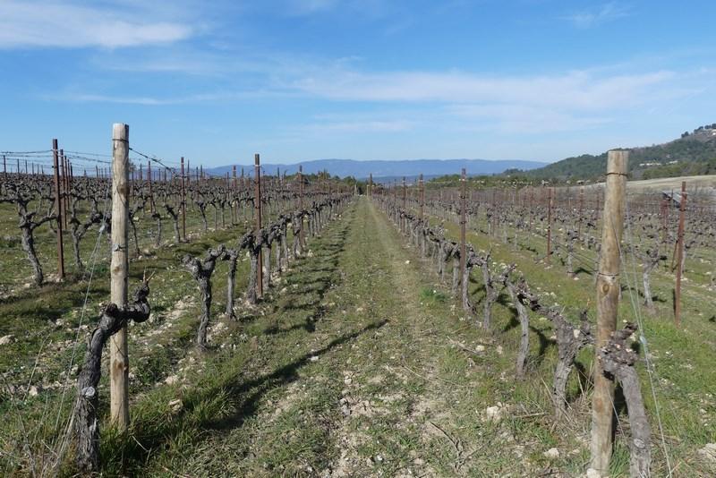 Podgorie Provence