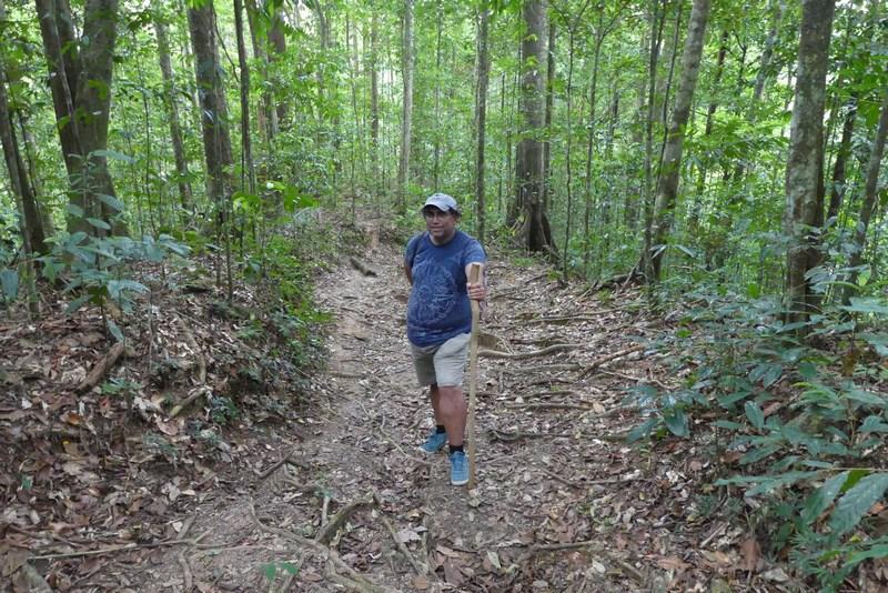 Trekking ASA Wright