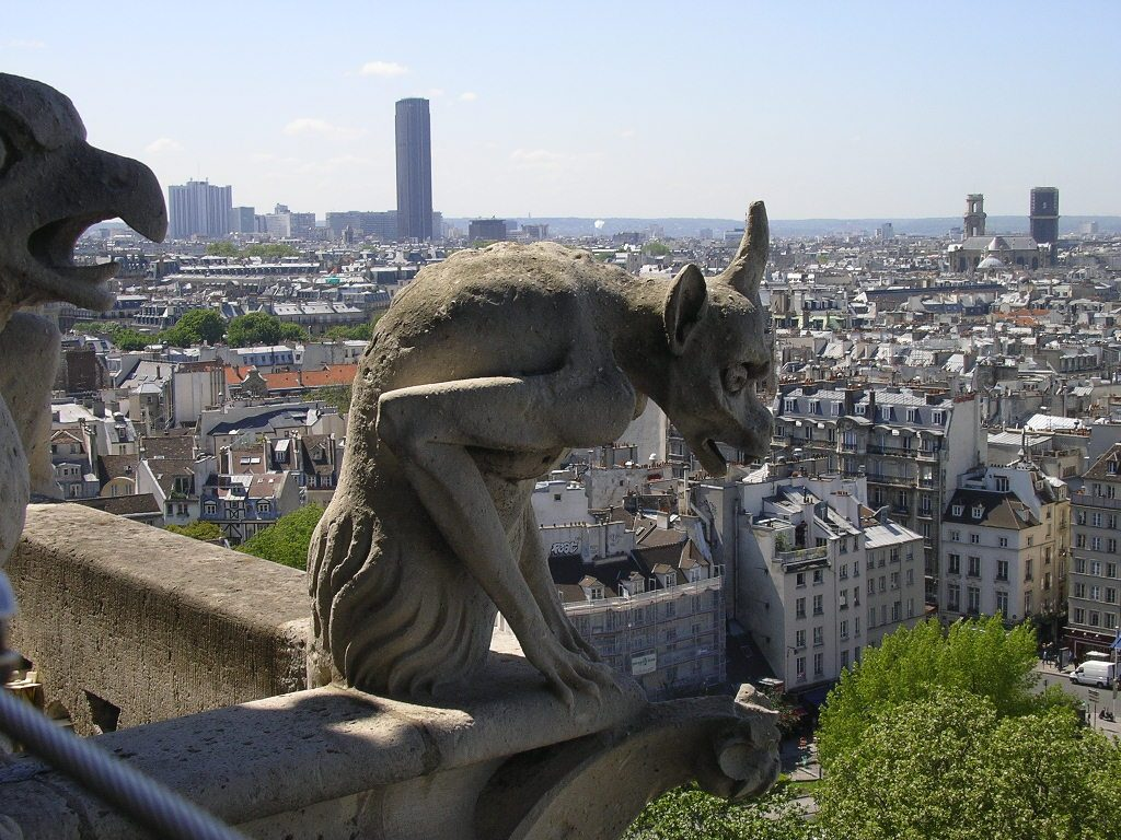 Animal fantastic Notre Dame