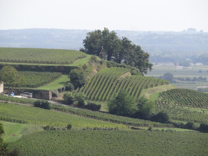 Zona rurala Bordeaux