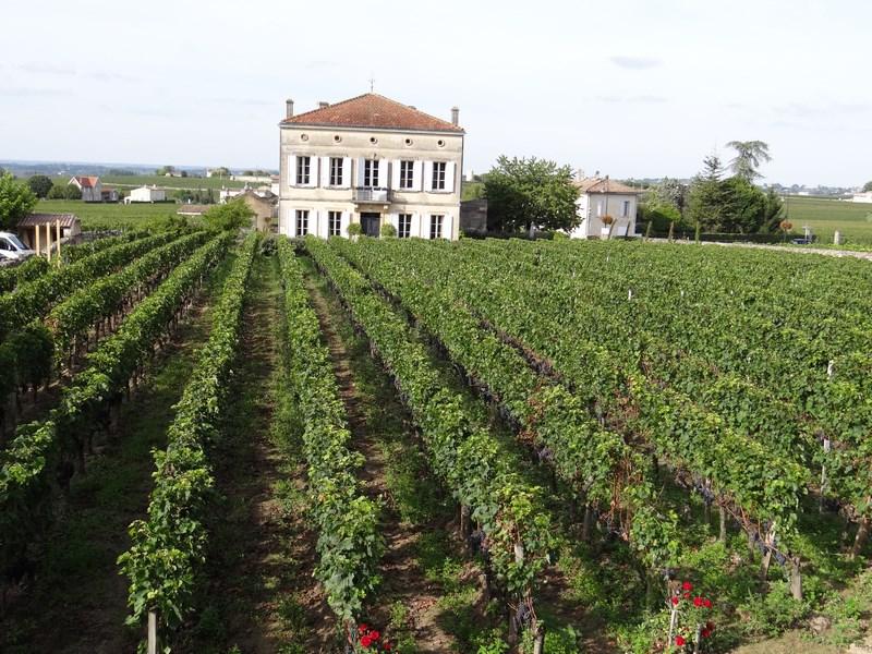 St. Emillion Bordeaux
