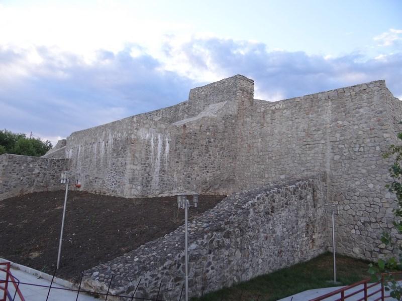 Cetatea Severinului