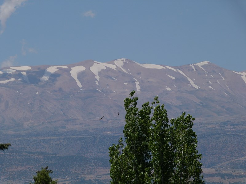 Valea Beka