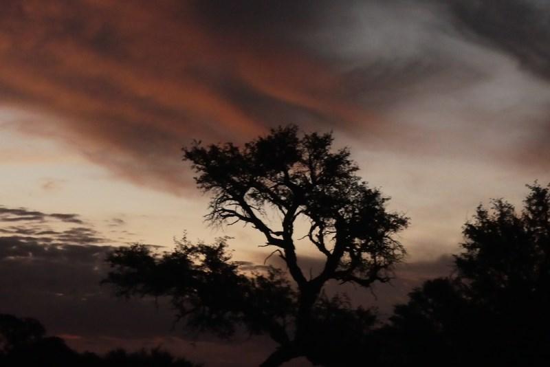 Apus de soare Africa