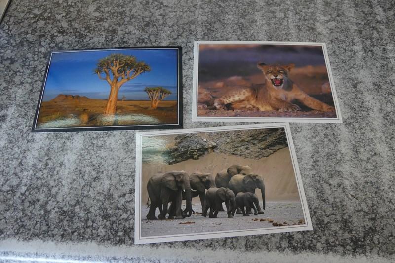 Vederi Zambia