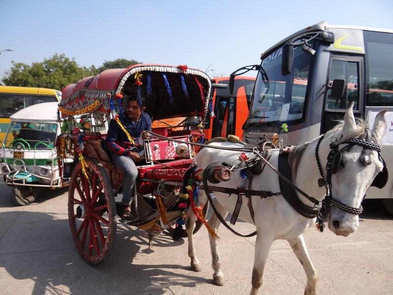 Caruta India