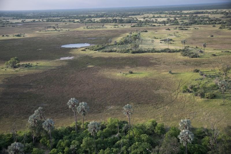 Okavango Delta Botswana