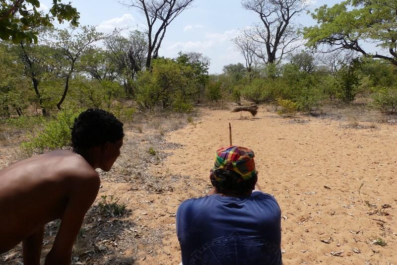 Vanatoare Africa