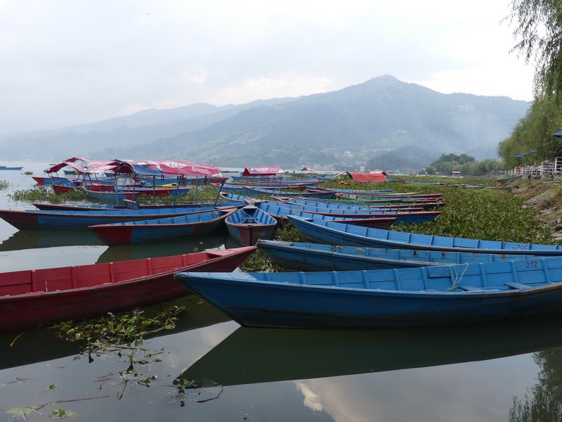 Barci pe lacul Phewa