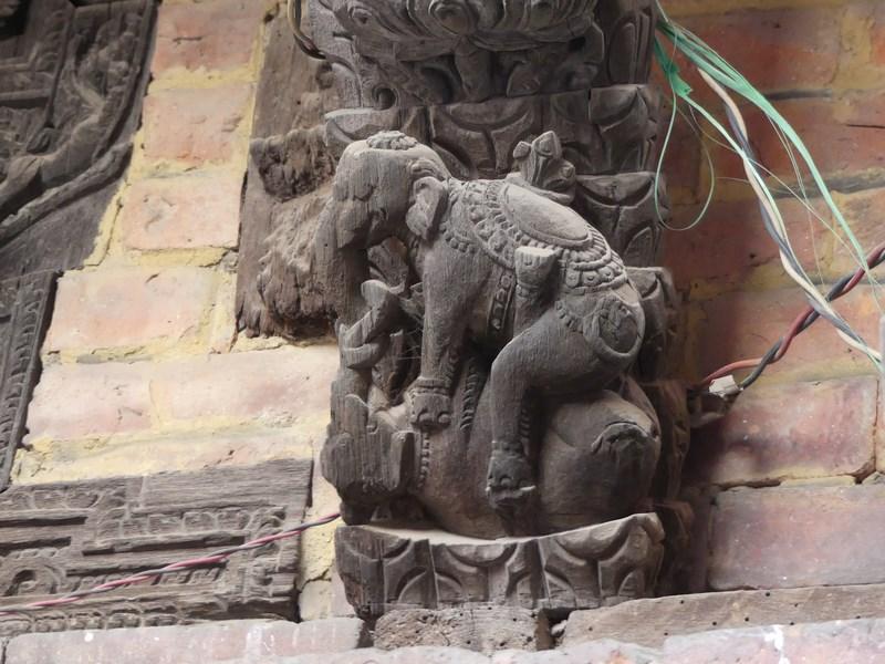 Elefantii erotici