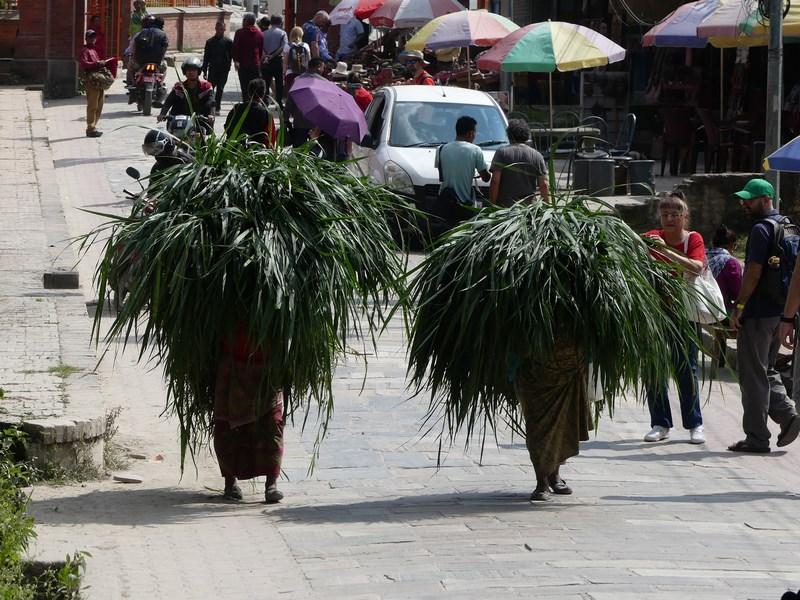Femei Nepal