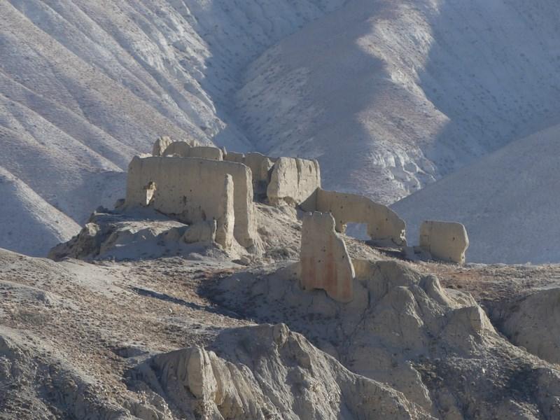 Citadela Mustang