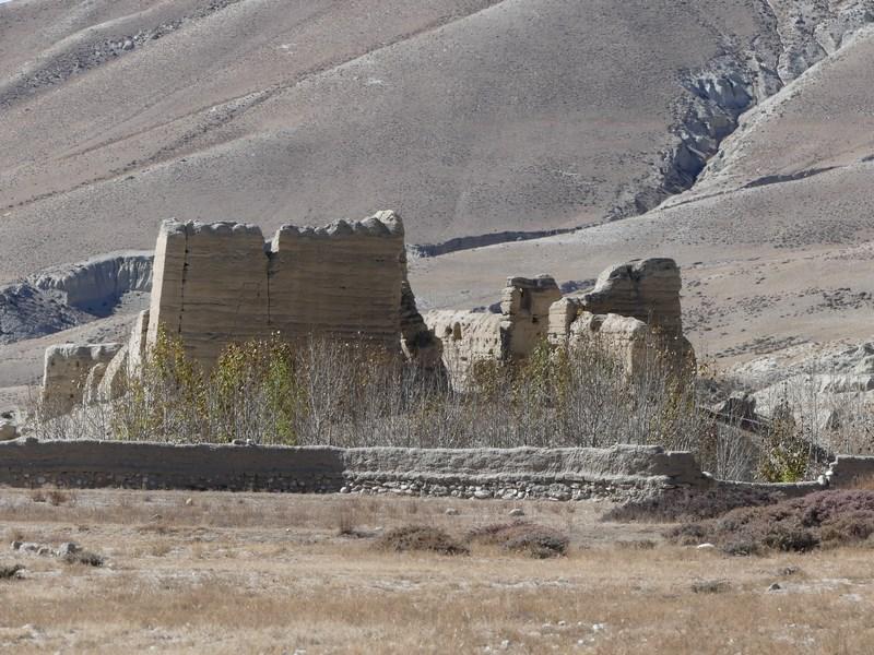 Ruine cetati