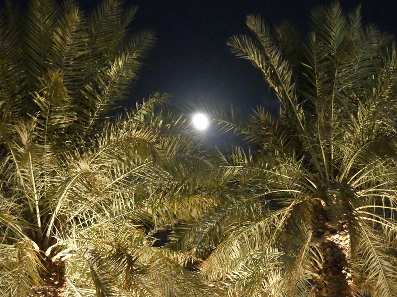 Luna la Doha