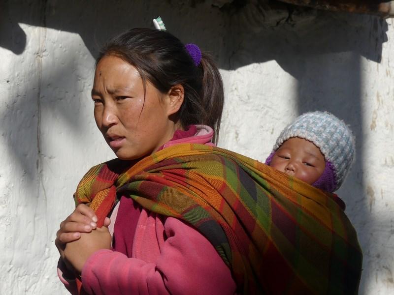 Mama cu copilul Mustang Tibet