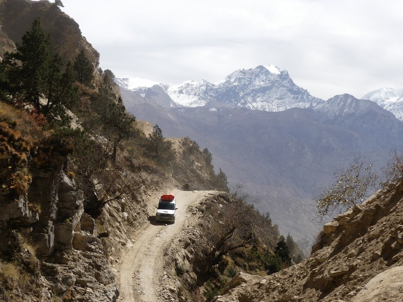 Mustang road