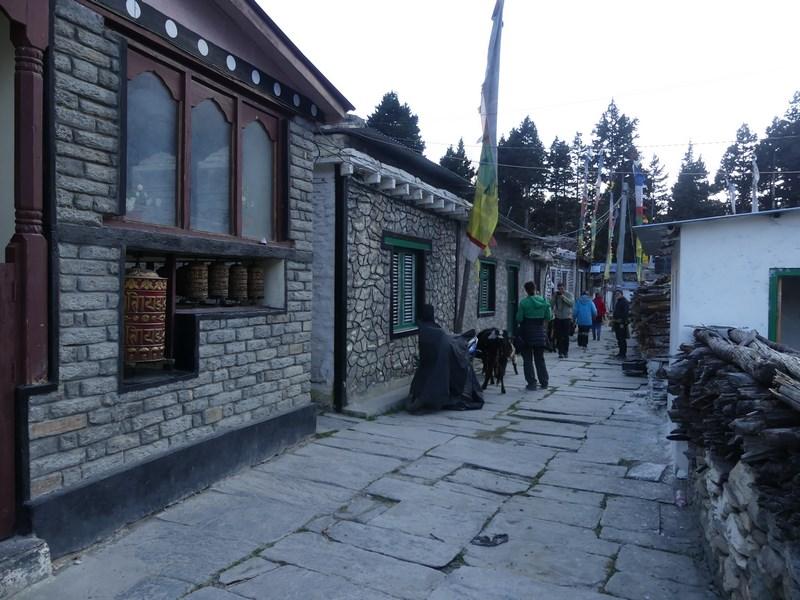 Sat refugiati tibetani