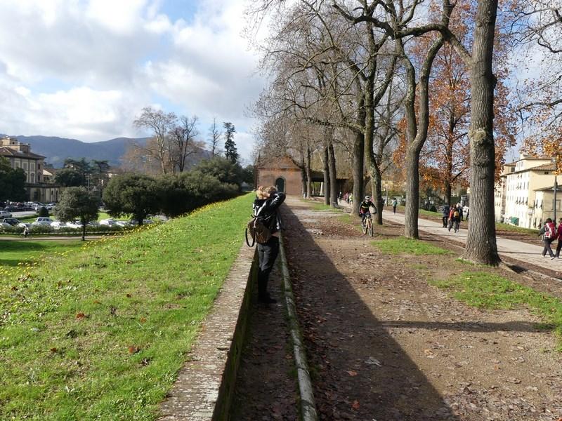 Ziduri Lucca