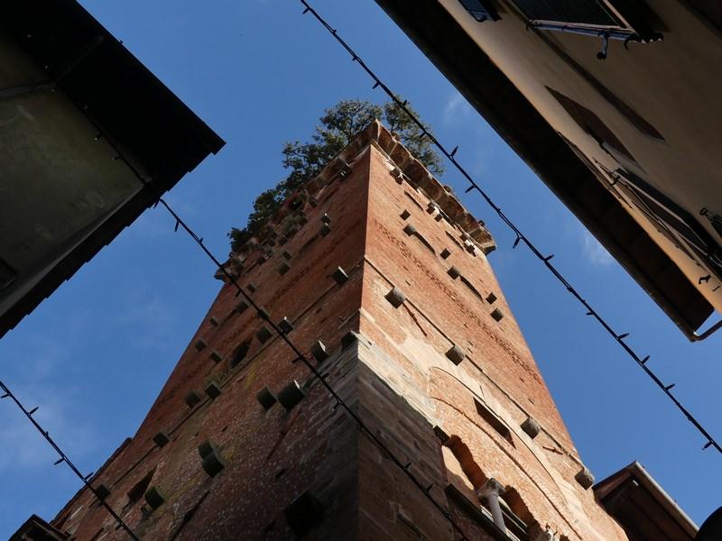 Guinigi Lucca