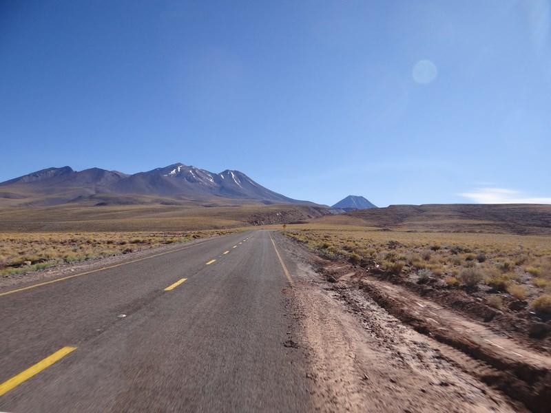 Sosea Atacama