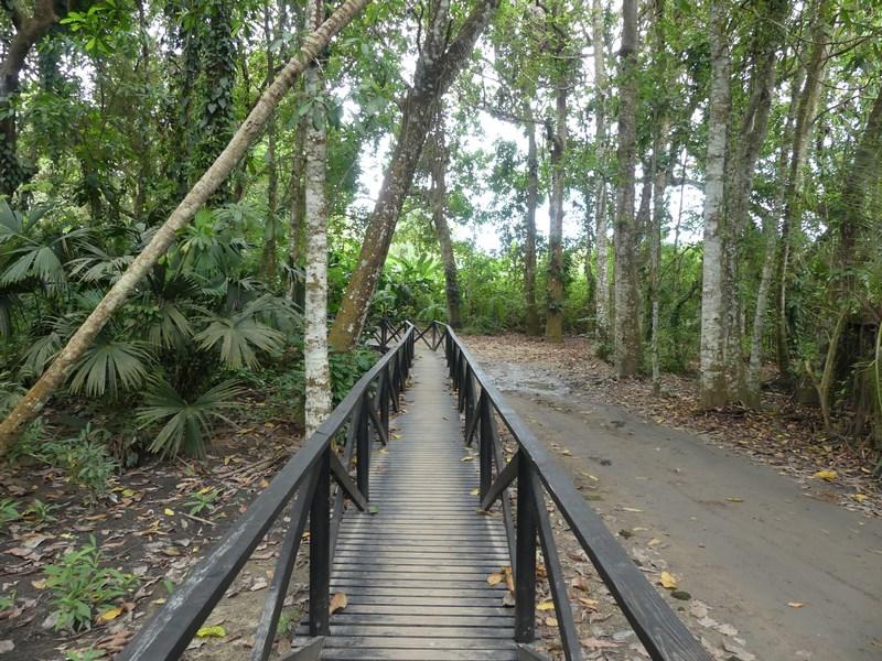 Tayrona trail