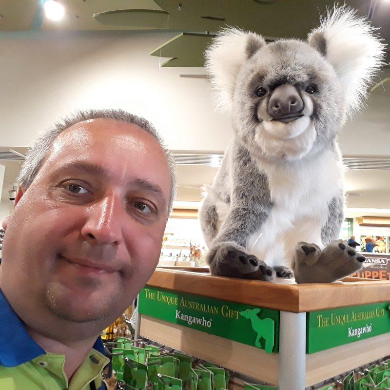 Koala shop