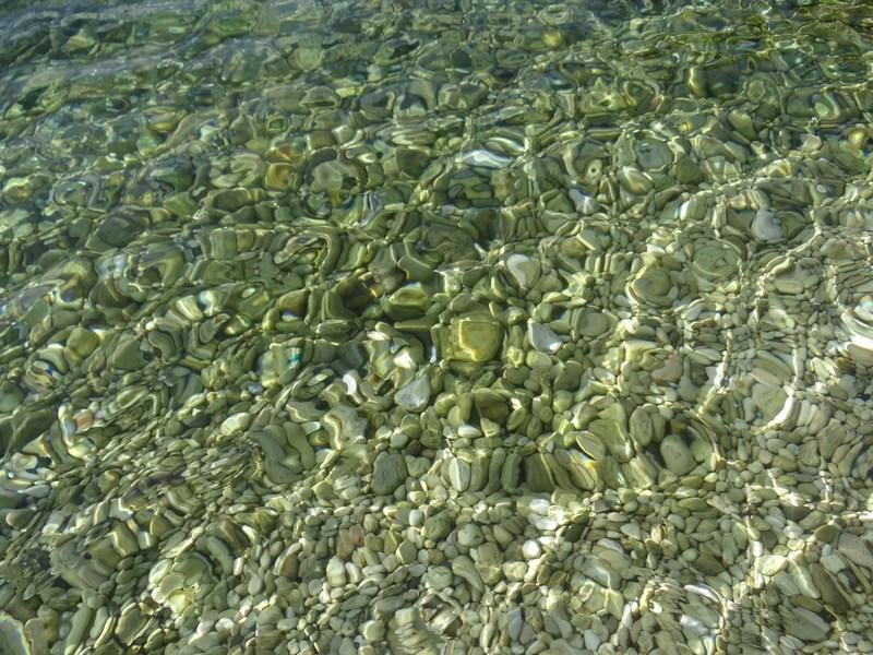 Apa verde