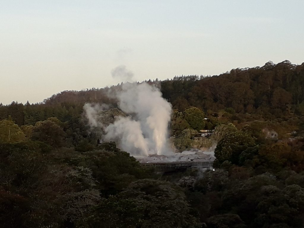 Geyser Rotorua
