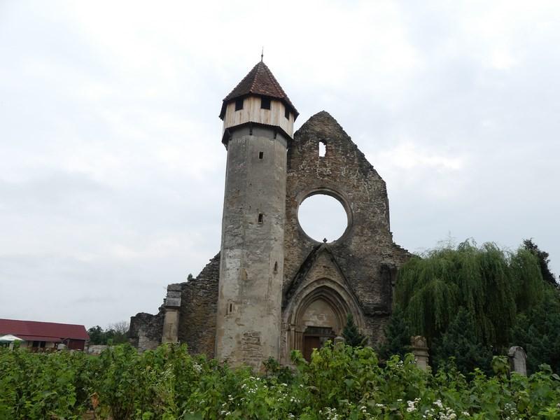 Ruine manastirea Carta
