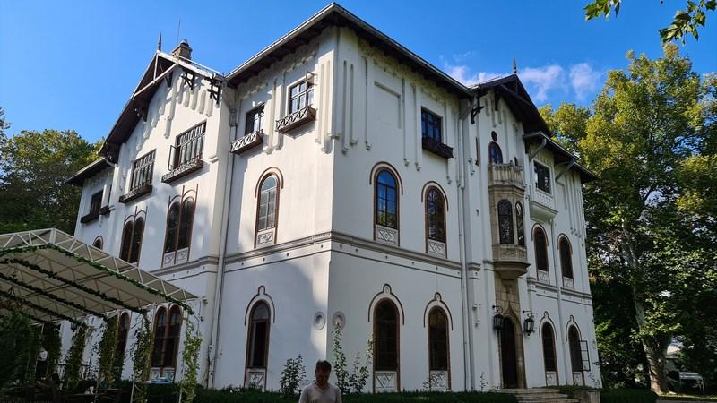 Palatul Stirbey Buftea