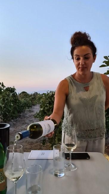 Degustare vin Sigalas
