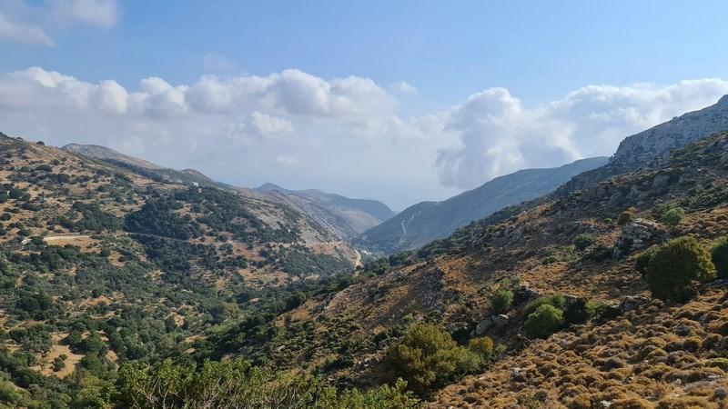 Zas Naxos