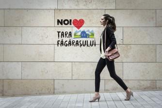 Fata in Tara Fagarasului