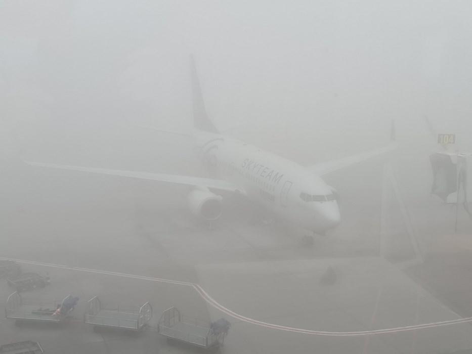 Tarom in ceata
