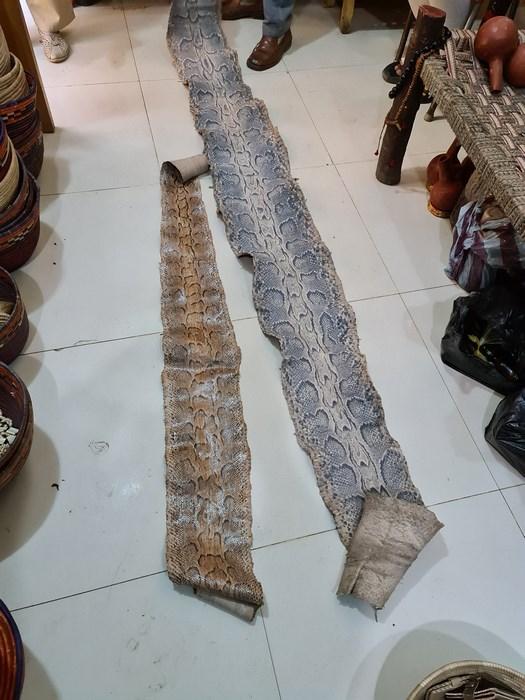 Piele Anaconda