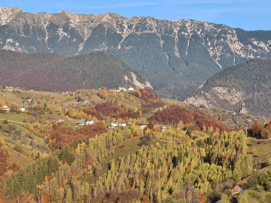 zona Pestera