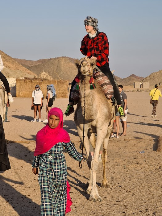 Plimbare cu camila Egipt