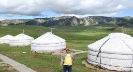 Yurt camp Terelj
