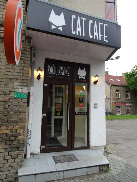 Cat cafe Vilnius