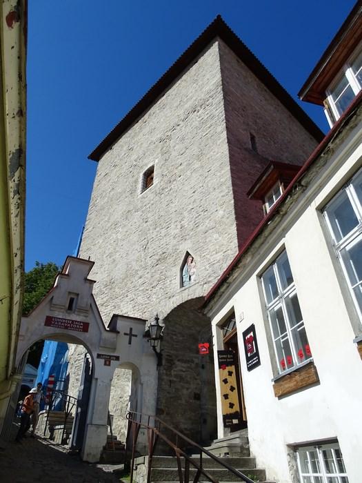 Turn Tallinn
