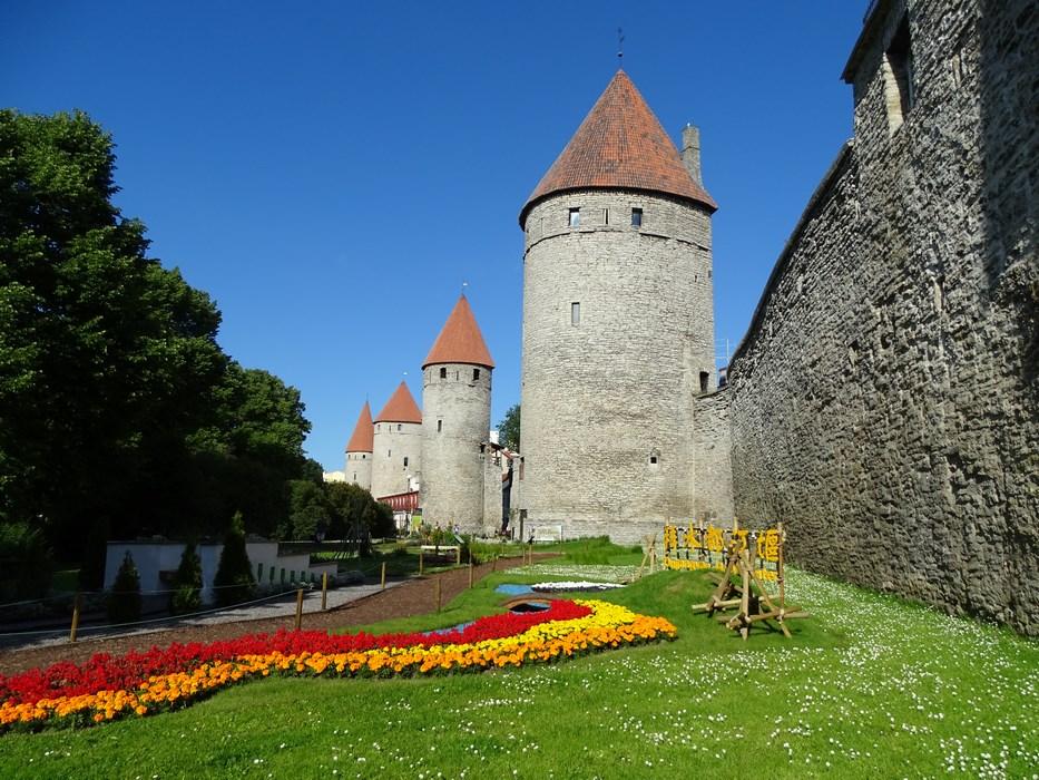 Ziduri cetate Tallinn