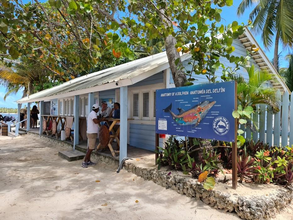 Baza Dolphin Island