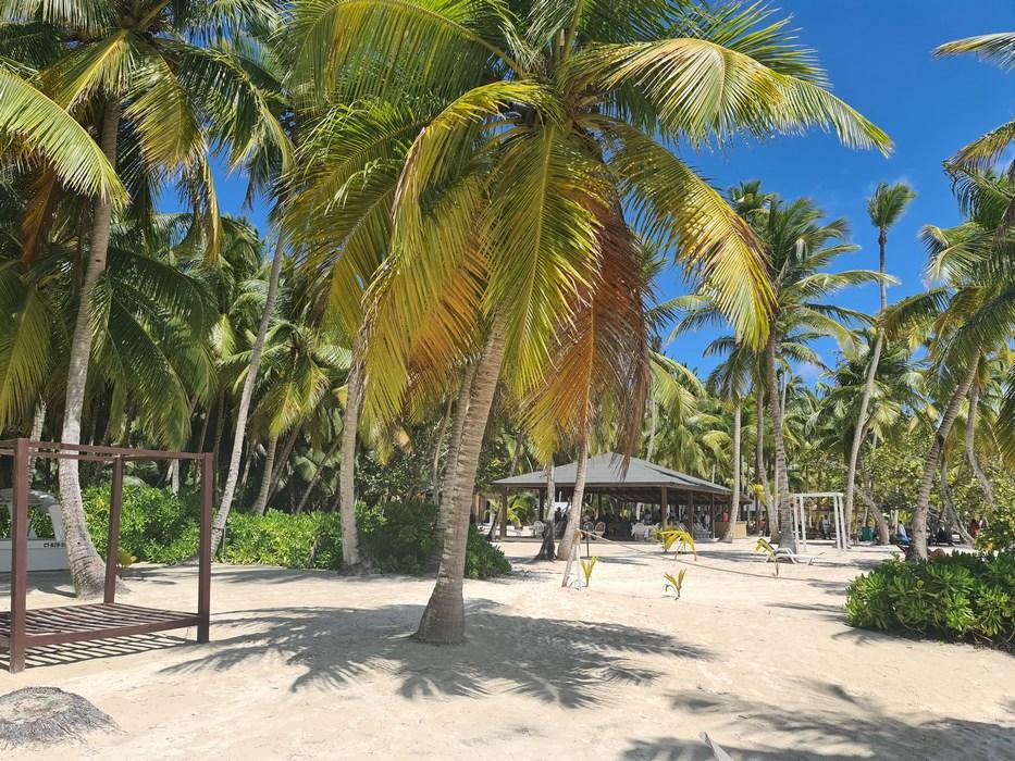 Palmieri Republica Dominicana