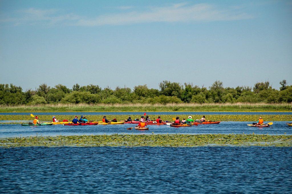 . Activități în Delta Dunării