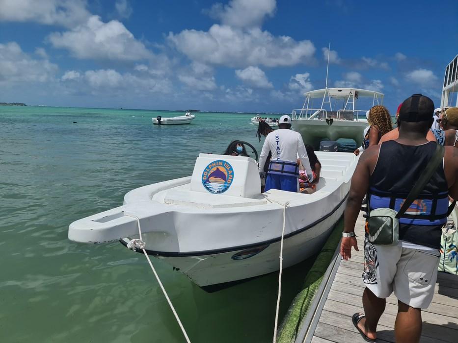 Transfer Dolphin Island